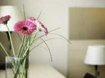 room-hotel-spa-vilnus-sana-druskininkai_300x197_pc